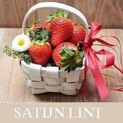 satijn lint online