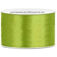 Appel Groen Satijn Lint 38 mm